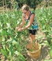 community-garden-eco-huronie-photo-by-nicole-millon