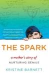 the-spark