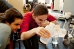 young-women-doing-science