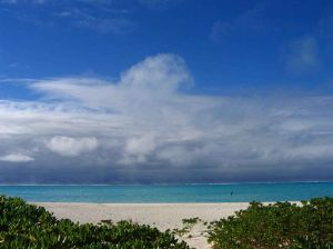 Beach_on_midway_atoll_national_wildlife_refuge-from-wc