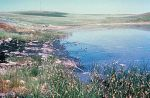 Oil_spill_into_wetlands-from-wc