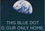 blu dot-screenco by pkl