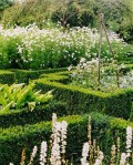Sissinghurst_Gardens-white-gardens--from-wp