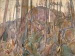 mountain woods, british columbia-no date-varley