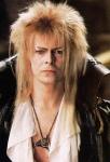 David-Bowie--gareth