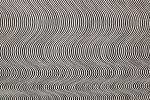 bridget_riley-scaled1000