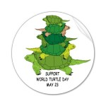 turtle_day